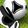 Professional Goalkeeper: Euro 2012